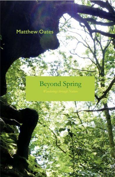 Beyond Spring 1