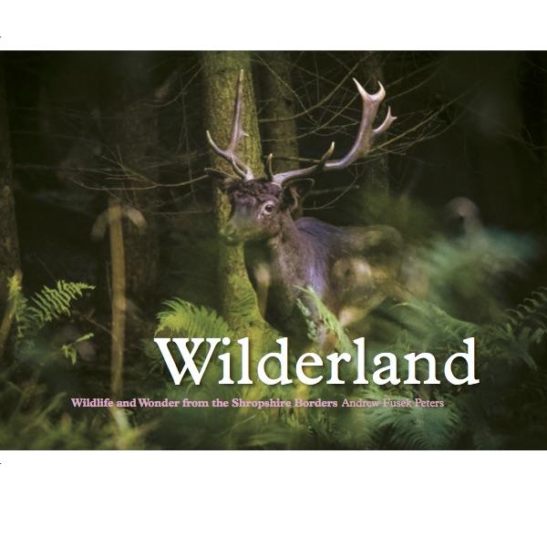Wilderland for WB