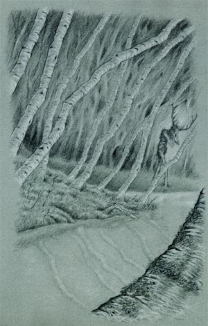 Artwork by Peter Tinkler for Through the Woods